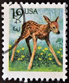 UNITED STATES OF AMERICA - CIRCA 1991: A stamp printed in USA shows a Roe Deer, Capreolus capreolus