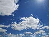 A Sunny Sky