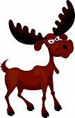 Moose cartoon