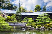 nice view with temple at Japan