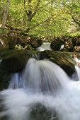 Waterfall. Arroyo Valdecuevas, Leon