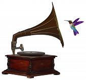 stock photo of hummingbirds  - Old gramophone and colorful hummingbird listening to music - JPG
