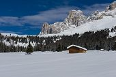 image of south tyrol  - Chalet and trees under the snow in the idyllic landscape of the dolomiti in Trentino South Tyrol - JPG
