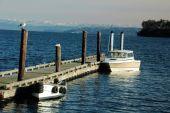 Boats Docked Coupeville