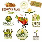 pic of wagon  - Set of Fresh Organic Labels and Elements - JPG
