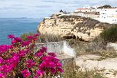 Algarve Scenery with pink Flowers in the Foreground focus on the foreground