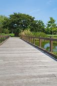 stock photo of pubic  - Wood bridge in green pubic park and blue sky - JPG