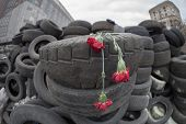 Flowers in honer of heroes killed on barricades in Kiev.