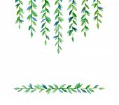 Cute retro branches with green leaves. Watercolor drawing.