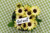 Get well card with yellow daisies on checkered surface