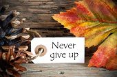 Autumn Label With Never Give Up