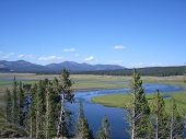 Eden garden in Yellowstone