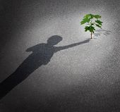 image of hope  - Life and hope as a grow concept with a shadow of a child touching a tree sapling growing through city pavement as a symbol for the future environment protection and the support of the next generation - JPG