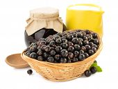 black currants on white background
