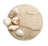 Round background with sea shells on sand .