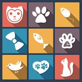 Flat cat icons set, pet application icon in flat design for web and mobile