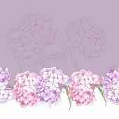 Beautiful Pink Hydrangea Seamless Floral Border