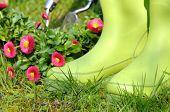 Gardening Rubber Boots