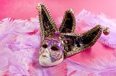 Venetian Mask On A Pink Background