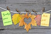 Autumn Leaves With Clothes-peg