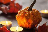 autumn halloween pumpkins and candles
