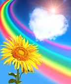 Rainbow, sunflower and heart from clouds in blue sky