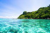 Lagoon Seascape In Paradise Found