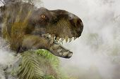 image of tyrannosaurus  - Tyrannosaurus Rex in the Jungle  - JPG