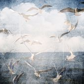 Abstract Grunge Background With Clouds And Seagull.