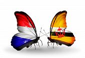 Two Butterflies With Flags On Wings As Symbol Of Relations Holland And Brunei