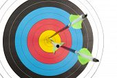 stock photo of longbow  - The bull - JPG