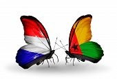 Two Butterflies With Flags On Wings As Symbol Of Relations Holland And Guinea Bissau