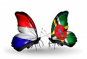 Two Butterflies With Flags On Wings As Symbol Of Relations Holland And Dominica