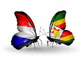 Two Butterflies With Flags On Wings As Symbol Of Relations Holland And Zimbabwe