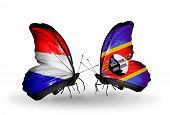 pic of holland flag  - Two butterflies with flags on wings as symbol of relations Holland and Swaziland - JPG