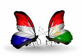 stock photo of holland flag  - Two butterflies with flags on wings as symbol of relations Holland and Tajikistan - JPG