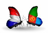 picture of holland flag  - Two butterflies with flags on wings as symbol of relations Holland and Eritrea - JPG