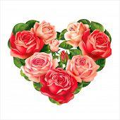 Roses heart on white. Vector eps 10.