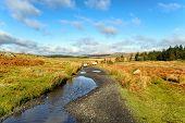 Dartmoor In Devon