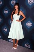 LOS ANGELES - JAN 17:  Hannah Simone at the FOX TCA Winter 2015 at a The Langham Huntington Hotel on January 17, 2015 in Pasadena, CA