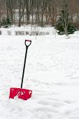 picture of snow shovel  - Red plastic shovel with black handle stuck in fluffy white snow - JPG