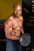 stock photo of weight lifter  - Toned and ripped lean muscle fitness man lifting weights on a curling bar - JPG
