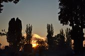 picture of graveyard  - Graveyard in Romania at sunset with tree silhouettes and tombs - JPG