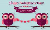 Happy Valentine's Day! Vector Greeting Card With Flat Owls.