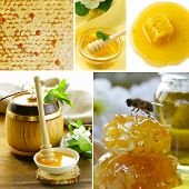 collage honeycomb and  honey in jar organic product