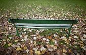 Bench In The Park With Autumn Leaves In Spain