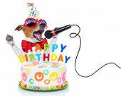 stock photo of jacking  - jack russell dog as a surprise singing birthday song like karaoke with microphone behind funny cake wearing red tie and party hat isolated on white background - JPG