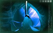 image of larynx  - Digital illustration of human lungs in colour background - JPG