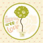 stock photo of tree-flower  - Flowering tree of love in the pot - JPG