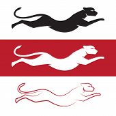 picture of cheetah  - Vector image of an cheetah on white background and red background - JPG